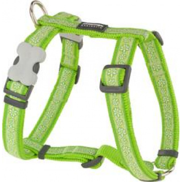 Postroj Red Dingo 15 mm x 36-54 cm - Daisy Chain Lime