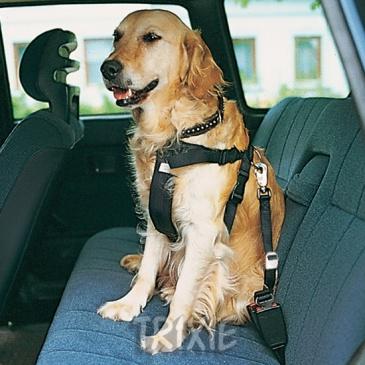 """Bezpečnostní postroj do auta. """"S"""""""