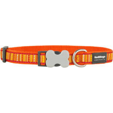 Obojek Red Dingo 12 mm x 20-32 cm - Lotzadotz Orange