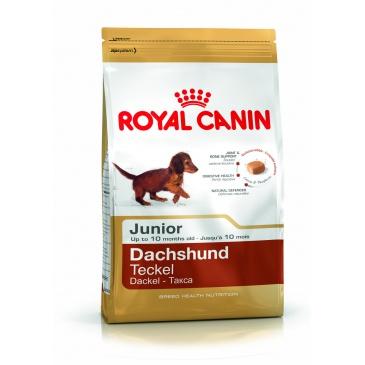 Royal Canin Jezevčík Junior 1,5kg