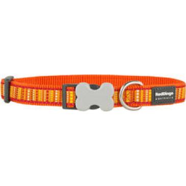 Obojek Red Dingo 25 mm x 41-63 cm - Lotzadotz Orange